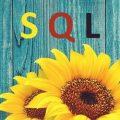 sql-base-datos