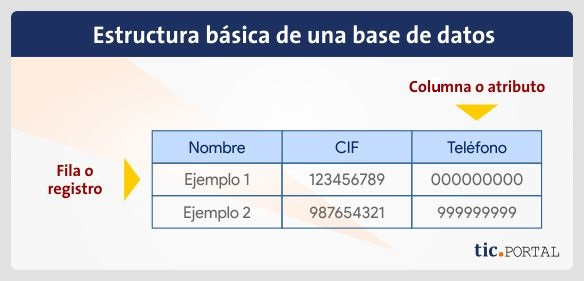 estructura base datos database