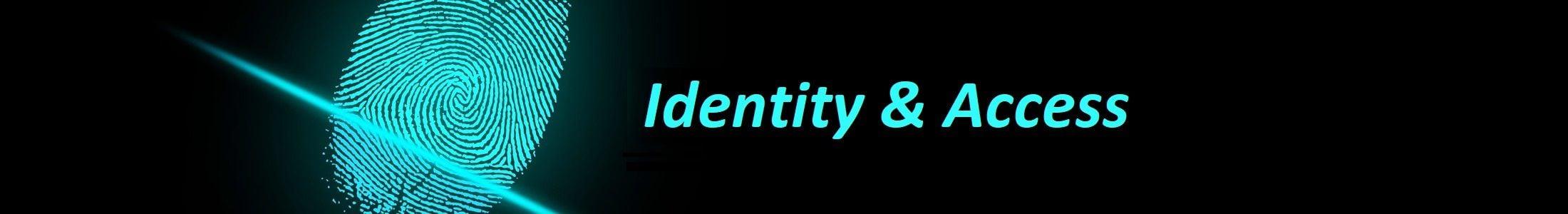 gestion identidad acceso