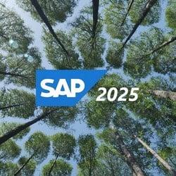 El apagón de SAP: ¿qué pasará en 2025 con versiones anteriores de ERP?