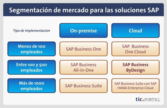 sap business bydesign segmentacion mercado