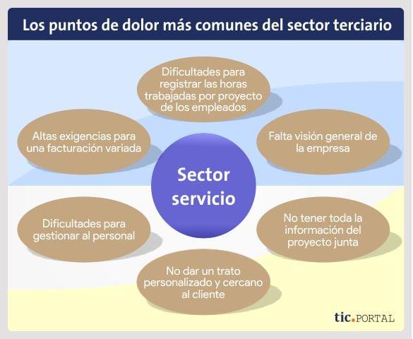 sector servicio erp pain